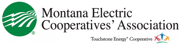 Montana Electric Cooperatives' Association's Logo